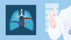 Dynamic lung and vent status panel